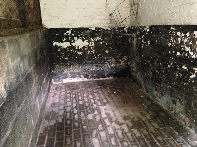 Uplands Stables Internal Stable